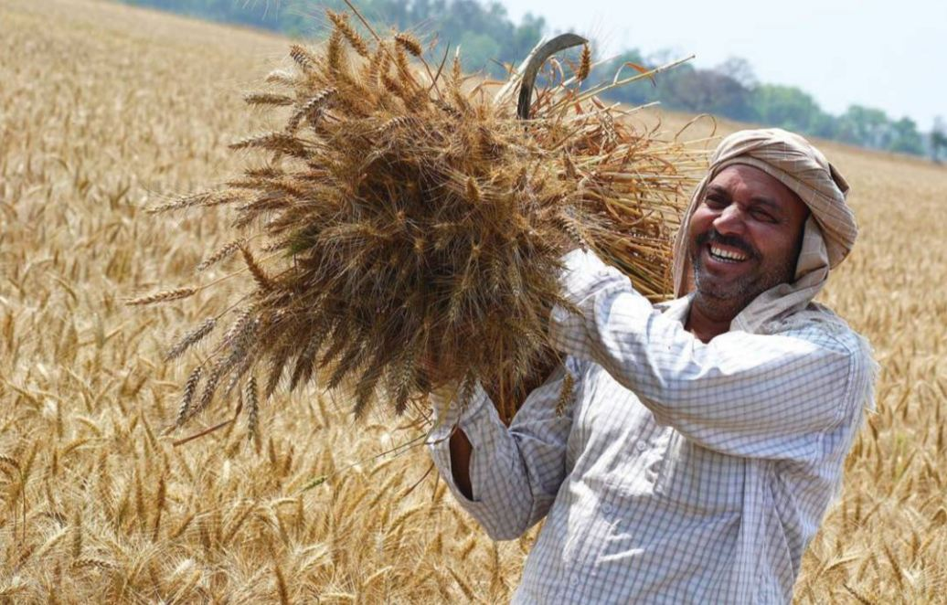 Bringing Growth, Ingenuity, Experience For Doubling Farmer's Income
